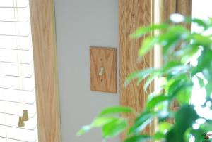 Oak Switchplate